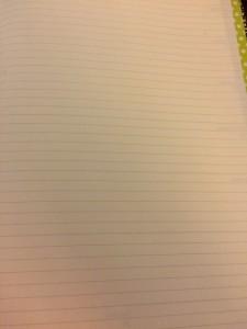 moleskine notes