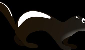 Valentines skunk