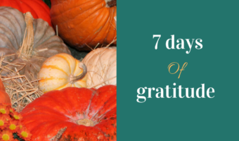 7 Reasons for Gratitude