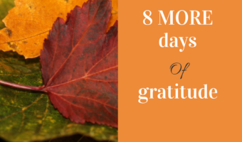 8 More Reasons for Gratitude